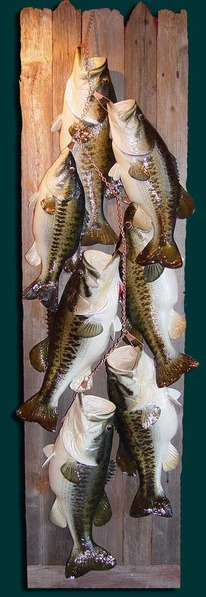7 Bass stripnger-